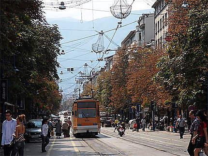 Boulevard Bintocha