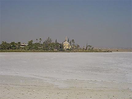 Le lac salé de Larnaca