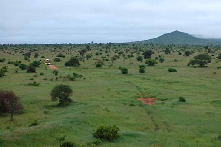 Amboseli : au pied du Kilimandjaro, le pays des Massaï
