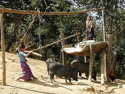 Mouture ancestrale du riz à Houé Loung Soung