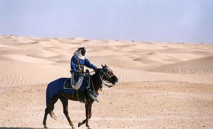 Parade dans le désert