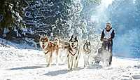 Les autres activités hivernales sur la neige