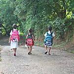 Sur la route de l'école à Praslin