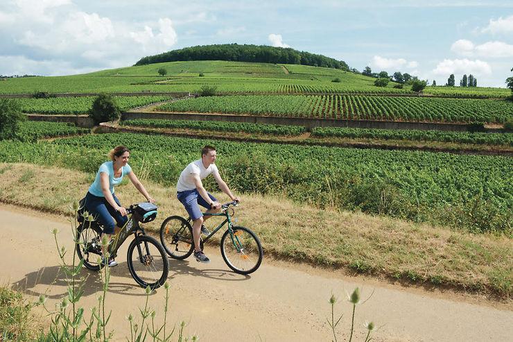 Vélo - Suivre la Voie des Vignes en Bourgogne