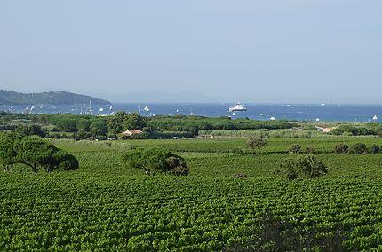 Baie de Pampelonne