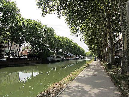 Le Canal du Midi à Toulouse, 4e bief (bief Bayard) en amont du Port St Sauveur