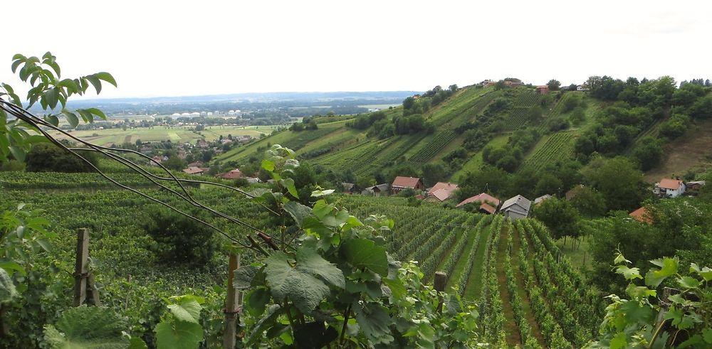La Slovénie au naturel