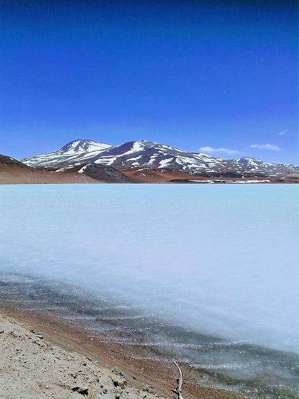 Balade Atacama altiplano