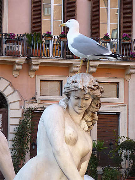 Piazza Navona ...