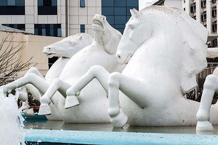 Alger - La fontaine aux chevaux