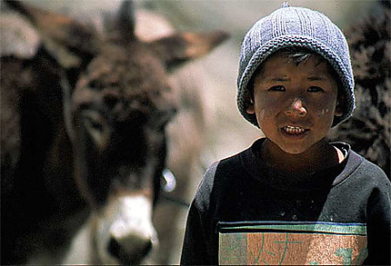 Bolivie, garçon et son âne