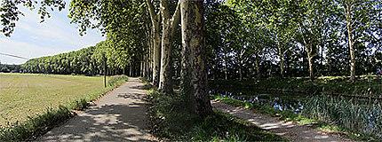 Le Canal du Midi à Toulouse, 4e bief (bief Bayard) entre le pont canal des Herbettes et la marina de Ramonville