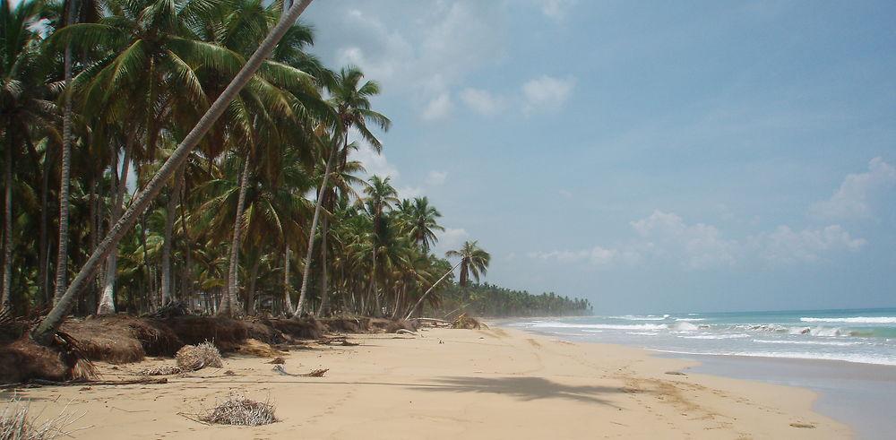 5 bonnes raisons de voyager en République Dominicaine