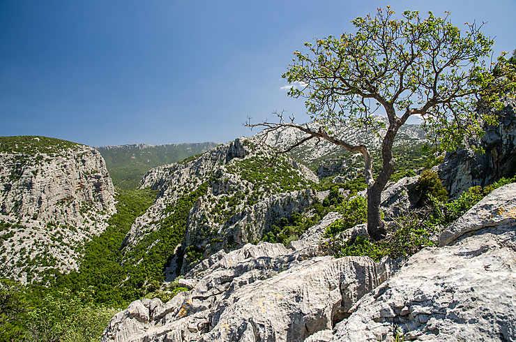 Le Supramonte : Orgosolo et Oliena