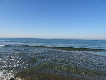 Mer d'huile - plage de l'Espiguette