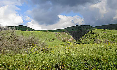 Plateau du Golan (Israël)