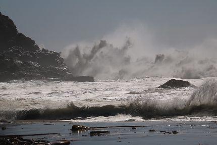 Le Pacifique en colère