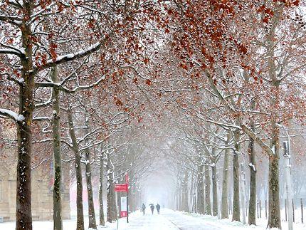 Le Parc de la Villette en hiver
