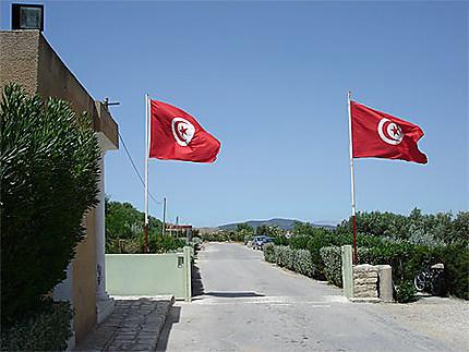 Drapeaux de Tunisie