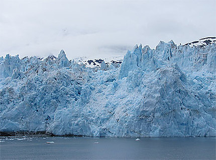 Glacier Surprise