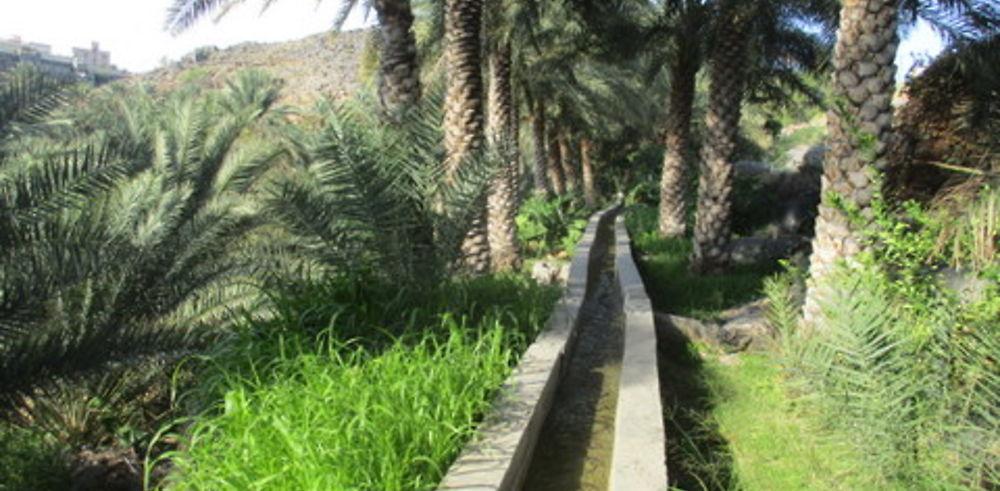 Retour 1 semaine Oman