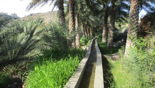 Retour 1 semaine Oman michele87