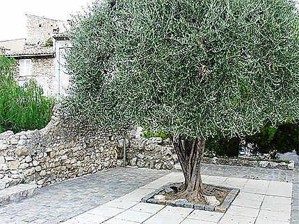 Place de L'arbre