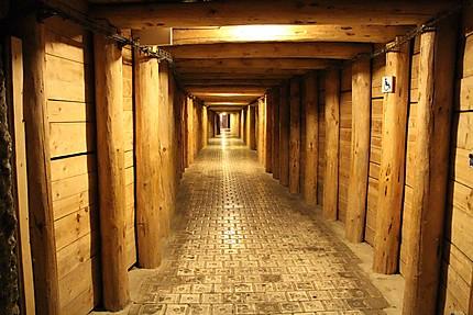 Mines de sel de Wieliczka