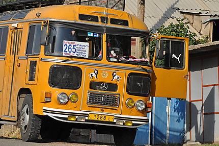 Bus à Garni