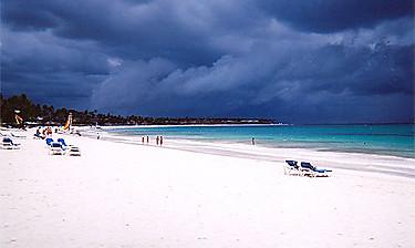 Playa Punta Cana (sur la côte des Cocotiers)