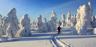 Felltrek, la Laponie sauvage à ski