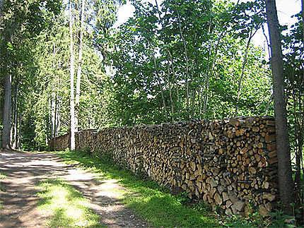 Provision de bois