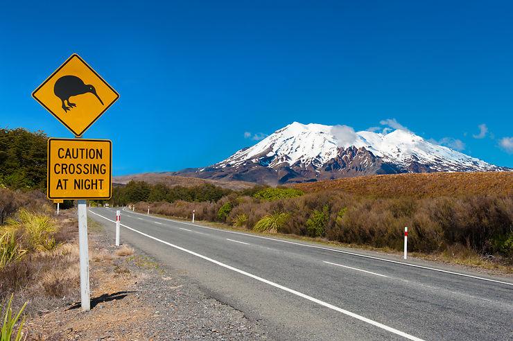 Nouvelle-Zélande  - Autorisation électronique de voyage obligatoire dès le 1er octobre 2019
