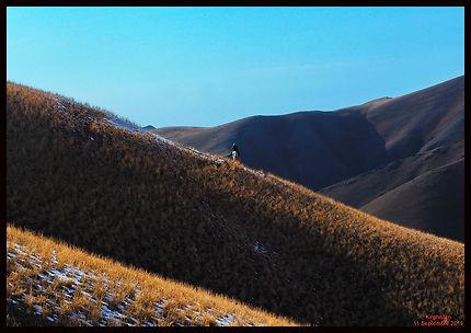 7 jours de rando équestre dans les monts Ferghana