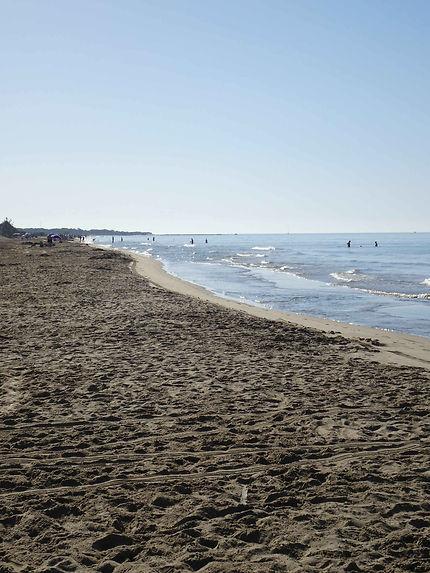 Très longue plage de l'Espiguette