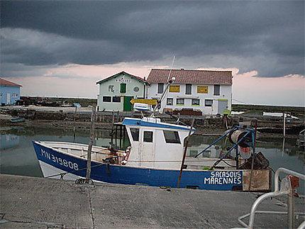 Port de la Cayenne