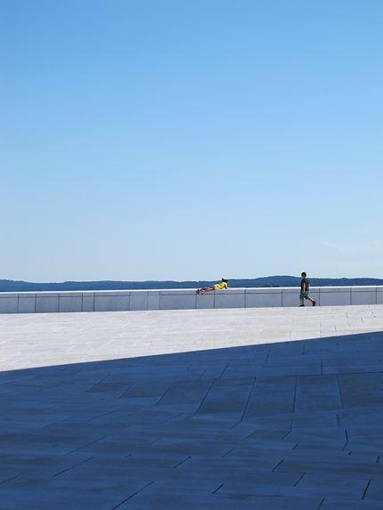 Déambulations sur le toit de l'opéra