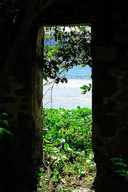 Porte ouverte sur la nature