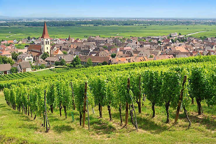 Alsace : randonnées dans le Haut-Rhin