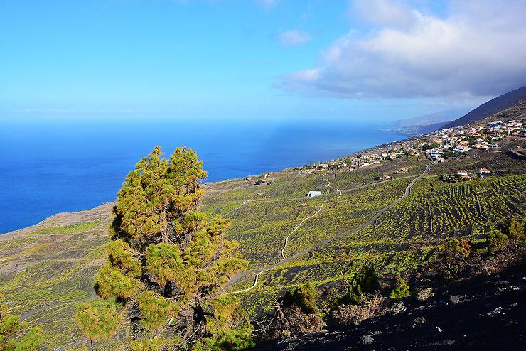 Canaries : La Palma, Isla bonita