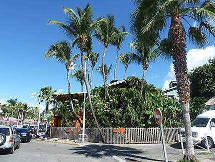 Sous les palmiers les langoustes grillées