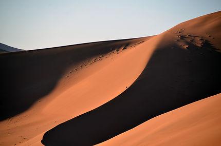 Dunes sans limite