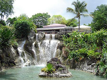 Jardin botanique de deshaies jardin botanique de for Agencement du jardin