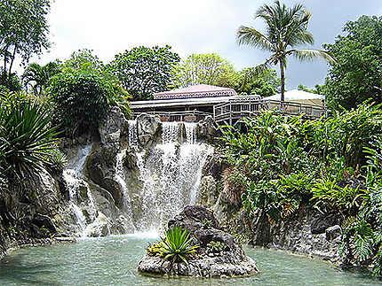 Jardin Botanique De Deshaies Jardin Botanique De Deshaies Deshaies Basse Terre Guadeloupe Routard Com