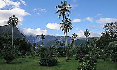 Tahiti  (îles de la Société)