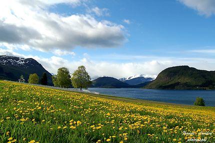 Rødvenfjorden