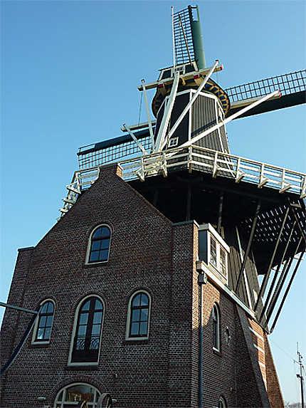 Moulin De Adriaan