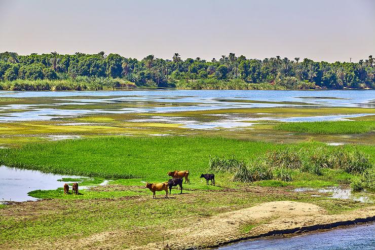 Hâpy-hour sur le Nil