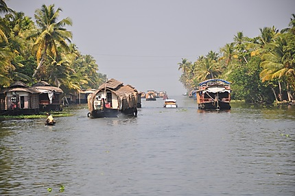 House boat à Alleppey