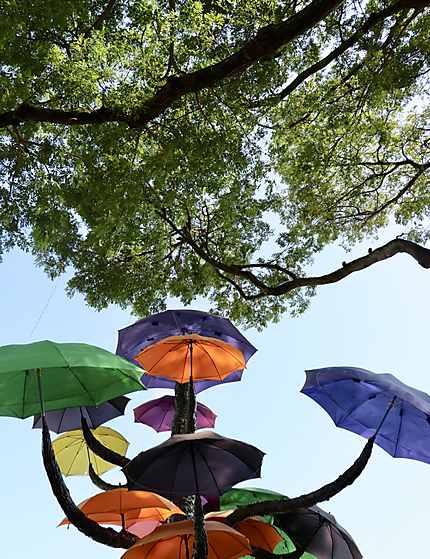 Les parapluies de Singapour